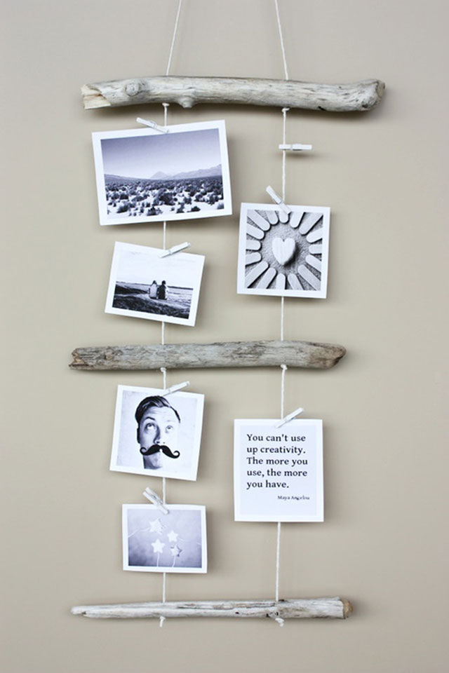 photo-driftwood-photos